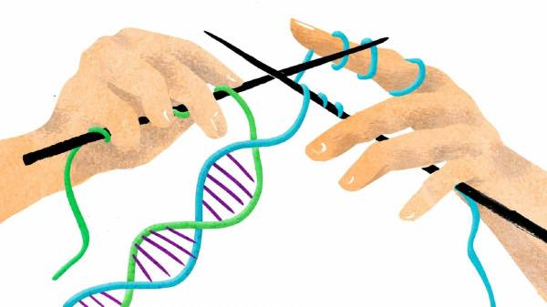 Як звички бабусь змінюють гени їхніх онуків