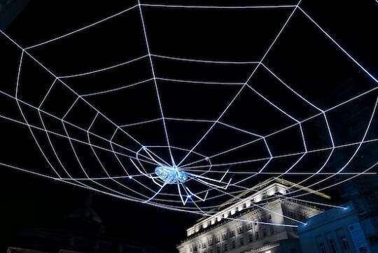 Технології Як павуки плетуть павутину і чому це важливо для штучного інтелекту природа роботи технології