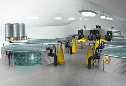 Технології Через забруднення морів рибні господарства поступово переїжджають на сушу екологія природа стаття технології