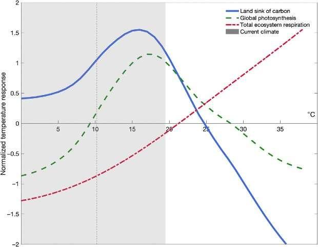 Криві відгуку фотосинтезу (зелена), дихання (червона) та оцінки балансу маси суші (синя) на глобальну температуру, нормалізовані відносно останніх декад. Джерело: Science Advances.