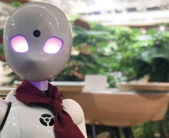 Технології 30 років першому сайту // Антивакс-знайомства // Роботи-офіціанти // ТехноКаст №14 embed-video zoom відео сша технокаст