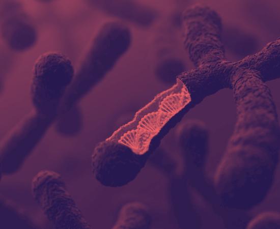 Життя Дослідники знайшли генетичні фактори ризику захворіти на COVID-19 здоров'я коронавірус стаття