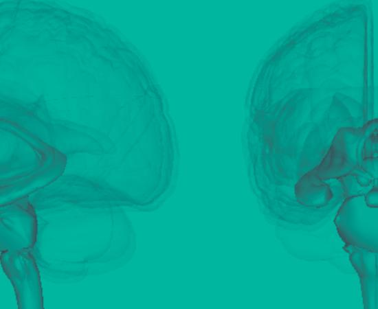Життя Психосоматика — чи дійсно всі хвороби від нервів? здоров'я медицина психологія стаття